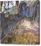 Abstraction In Color And Texture From Wet Rock Canvas Print