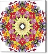 Abundantly Colorful Orchid Mandala Canvas Print