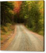 Acadia Backroads Canvas Print