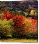Acadia Colors Canvas Print