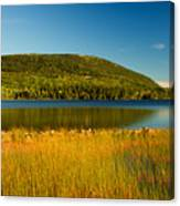 Acadia, National Park Shoreline And Marsh Maine Canvas Print