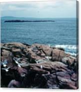 Acadia Park Maine Coast Canvas Print