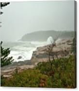 Acadian Storm Canvas Print