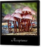 Acceptance 4 Canvas Print
