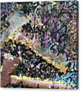Accetta Caduta Canvas Print