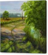 Ace Basin Pathway Canvas Print
