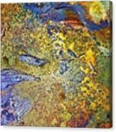 Acid Vs Texture Canvas Print