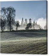 Acomb Misty Day Canvas Print