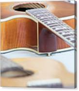 Acoustic Canvas Print