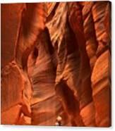 Adam Jewell In Buckskin Slot Canyon Canvas Print