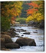 Adirondack Fall Stream 2 Canvas Print