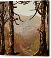 Adirondack Landscape Canvas Print