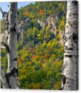 Adirondack Mountains New York Canvas Print