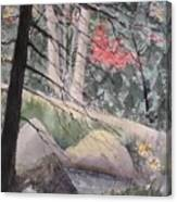 Adirondacks Canvas Print