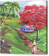 Admirando El Campo Canvas Print