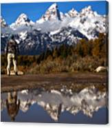 Admiring The Teton Sights Canvas Print
