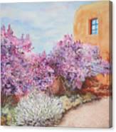 Adobe Lilacs Canvas Print