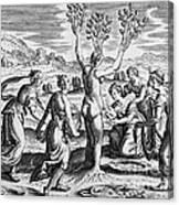 Adonis Being Born From Myrrha Canvas Print