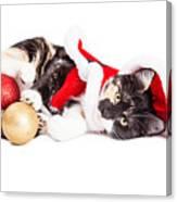 Adorable Christmas Calico Santa Kitty Canvas Print