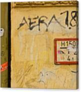 Aera 787 Canvas Print