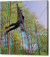 Aerial Artist - Use Red-cyan 3d Glasses Canvas Print