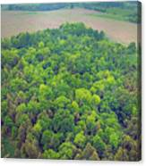 Aerial Forest Canvas Print