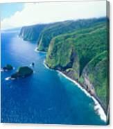Aerial Of North Shore Canvas Print