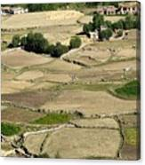 Aerial View Of Green Ladakh Agricultural  Landscape Canvas Print