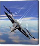 Aerobatics Over Water Canvas Print