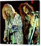 Aerosmith-94-brad-steven-1166 Canvas Print