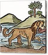 Aesop: Dog & Shadow, 1484 Canvas Print