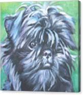 Affenpinscher Portrait Canvas Print