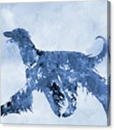 Afghan Hound-blue Canvas Print