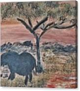 African Landscape With Elephant And Banya Tree At Watering Hole With Mountain And Sunset Grasses Shr Canvas Print