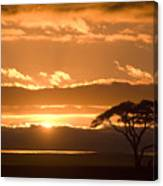 African Sunrise Canvas Print