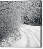 After An Ice Storm Canvas Print