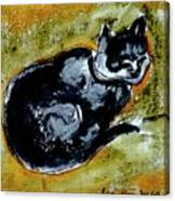 Afternoon Cat Canvas Print