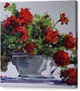 Afternoon Geraniums Canvas Print