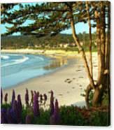 Afternoon On Carmel Beach Canvas Print