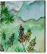 Afternoon Rainbow Canvas Print