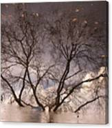 Afternoon Reflection Canvas Print