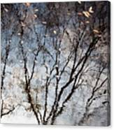 Afternoon Reflection II Canvas Print