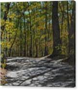 Afternoon Shadows - Oconne State Park Canvas Print