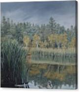 Afternoon Storm Approaching Lynx Lake Prescott Arizona Canvas Print