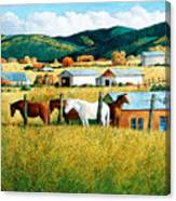 Afternoon Visitors Canvas Print