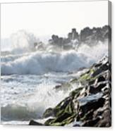 Against The Rocks Canvas Print
