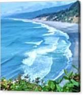 Agate Beach Canvas Print