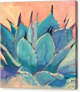 Agave 2 Canvas Print