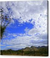 Agave And The Mountains Canvas Print
