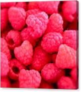 Agenda For Today ... Raspberry Jam Canvas Print